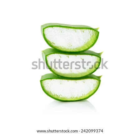 aloe vera fresh leaf isolated white background - stock photo