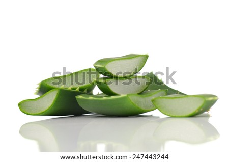Aloe vera leaves isolated on white background - stock photo