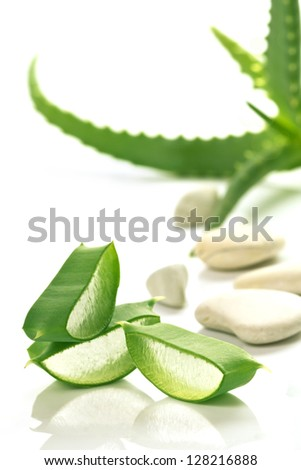 Aloe Vera sloced and whole with stones - stock photo