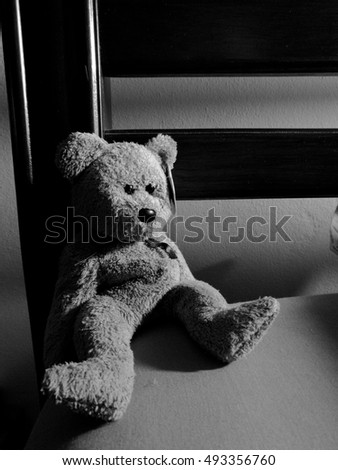 alone bear doll in black and white