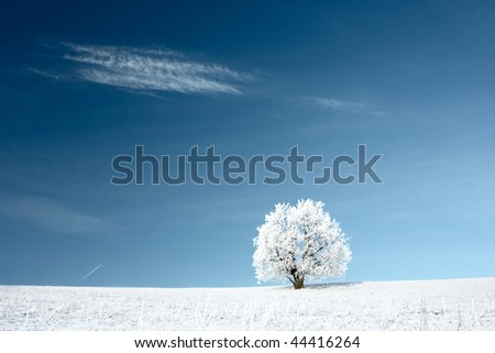 Alone frozen tree and deep blue sky with cloud - stock photo