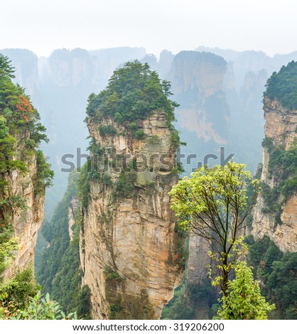 Alone rock column mountain (Avatar rocks). Zhangjiajie National Forest Park was officially recognized as a UNESCO World Heritage Site - China - stock photo