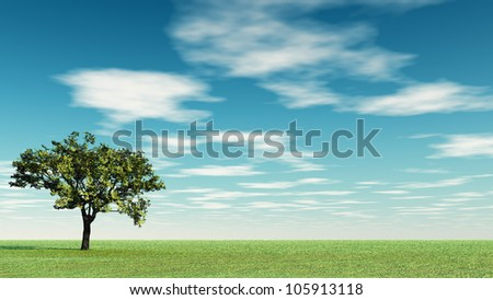 Alone Tree at  meadow and the  blue sky