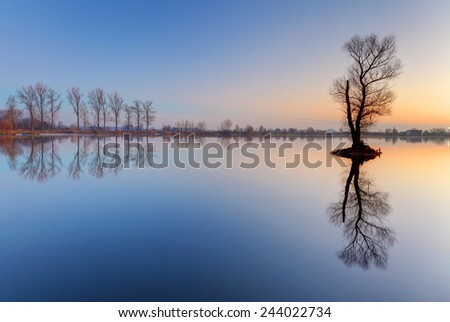 Alone tree in lake with color sky - stock photo