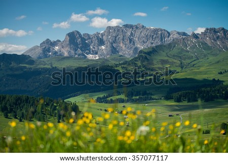 Alpe di Siusi with flowers during summer time