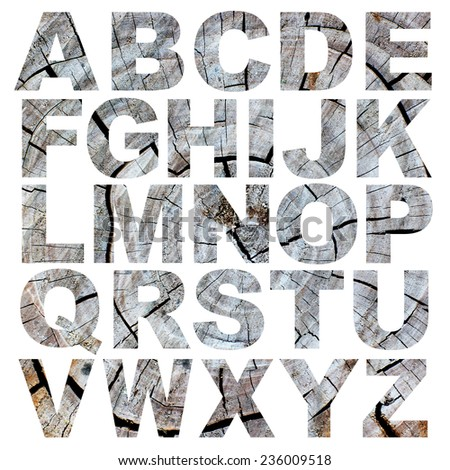 alphabet a to z made from tree bark picture