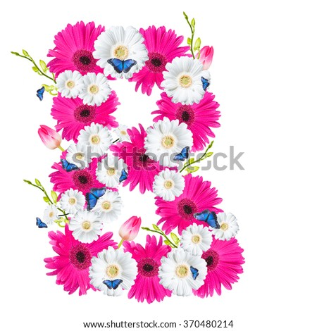 Alphabet B, flower isolated on white background. Gerber, tulips and butterfly  - stock photo