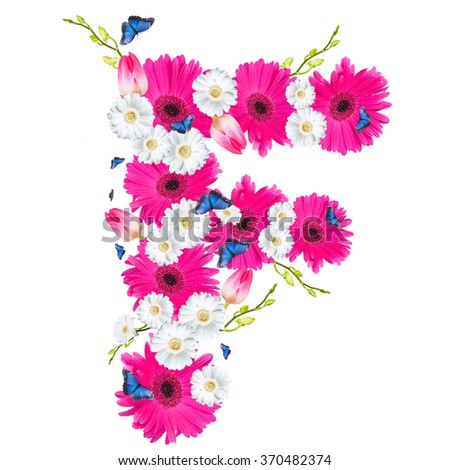 alphabet flower F, Gerber, tulips and butterfly isolated on white background.  - stock photo