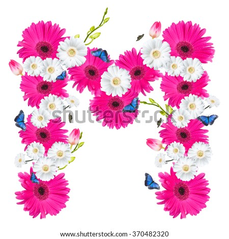 alphabet flower M, Gerber, tulips and butterfly isolated on white background.