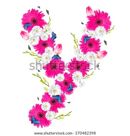 alphabet flower Y, Gerber, tulips and butterfly isolated on white background.  - stock photo