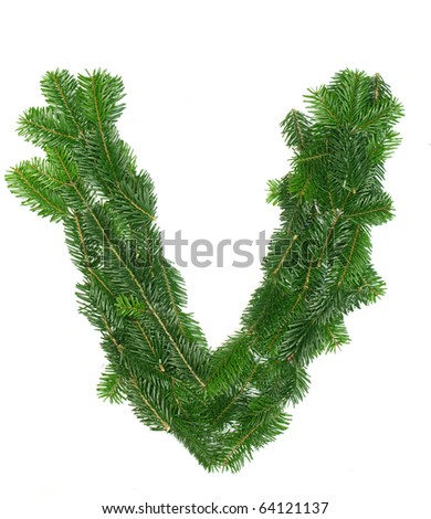 "Alphabet Letter ""V"" made of Abies branches"