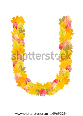Alphabet made from autumn falling leaves. Letter U, high resolution - stock photo