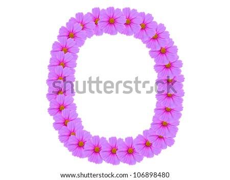 Alphabet O, Cosmos flower alphabet isolated on white - stock photo