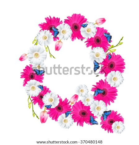 Alphabet Q, flower isolated on white background. Gerber, tulips and butterfly  - stock photo
