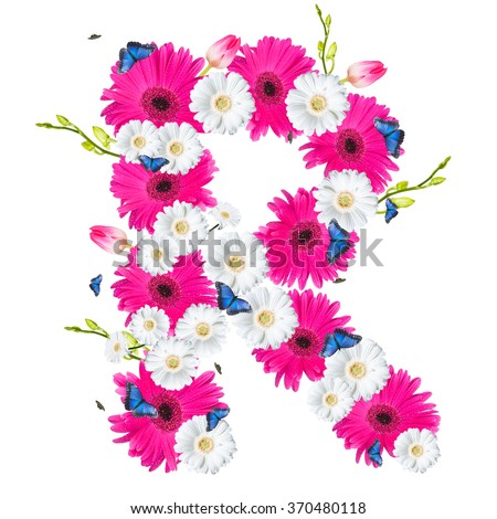 Alphabet R, flower isolated on white background. Gerber, tulips and butterfly  - stock photo