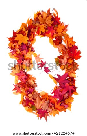 alphabet sign from autumn leaf isolated on the white background