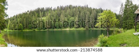 Alpin lake. Beautiful view with surrounding trees and grass. - stock photo
