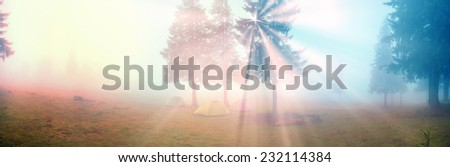 Alpine autumn panorama, scenic sunrise in the beautiful Carpathian forest after rain shining colors and  freshness and coolness of the morning - will clear the new day and good weather after the storm - stock photo