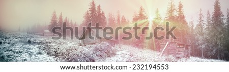Alpine autumn panorama, scenic sunrise in the beautiful Carpathian forest after rain shining colors and the freshness and coolness of the morning - will clear the new day and good weather after  storm