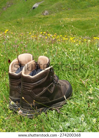 Alpine boots on a meadow - stock photo