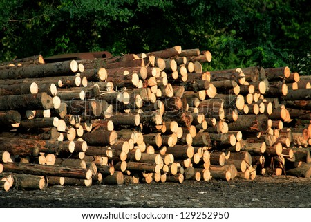Alpine Deforestation - stock photo