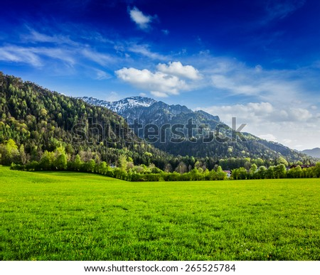 Alpine meadow in Bavarian Alps. Bavaria, Germany - stock photo