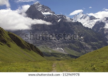 Alpine meadow in the Berner Oberland, Switzerland. First area, near Grindelwald. Mountain in the background is the Wetterhorn (3701 m / 12143 ft), on the right the Schreckhorn (4078  m / 13380 ft) - stock photo