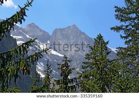 Alpine mountain landscape through the spruce, Switzerland - stock photo