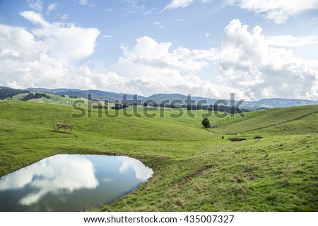 Alpine pasture with water pond reflecting the white clouds on the sky