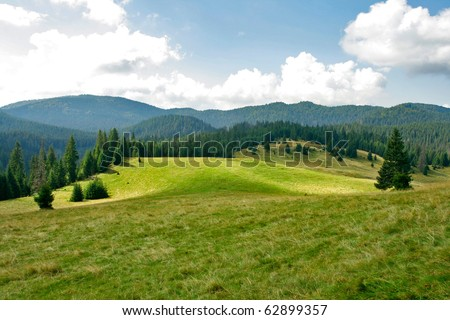 Alpine plain with forests and pastures