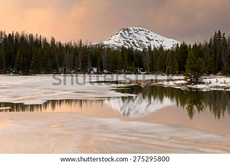 Alpine reflection during spring thaw, Utah, USA. - stock photo