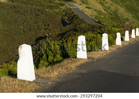 Alpine road in Madeira island, Portugal, Europe