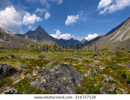 Alpine tundra in July. TUNKA ridge. Sayan mountains. Republic of Buryatia - stock photo