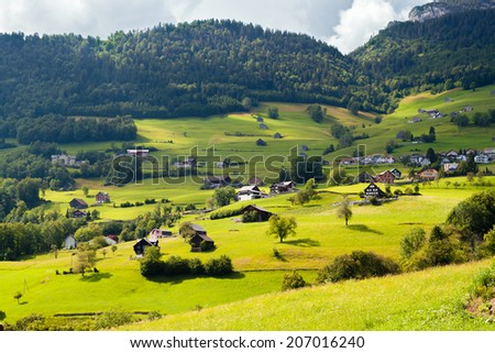 alpine village in a green valley in Switzerland - stock photo