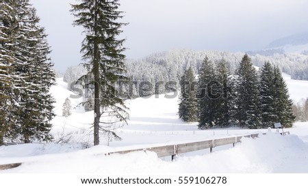 Alps in winter and Forest
