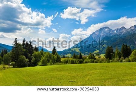 Alps mountain meadow tranquil summer view (Austria, Gosau village outskirts) - stock photo