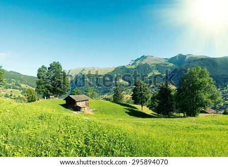 Alps scenery with Grindelwald Village in Switzerland - stock photo
