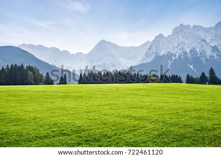 Alps with green meadow, landscape in summer day
