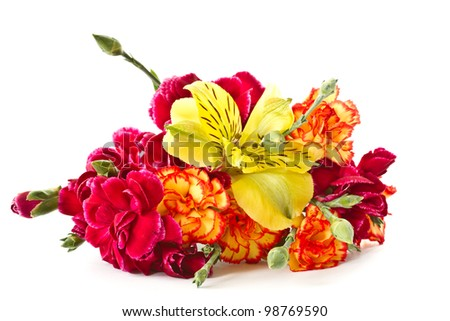 Alstroemeria and red carnations on a white background - stock photo