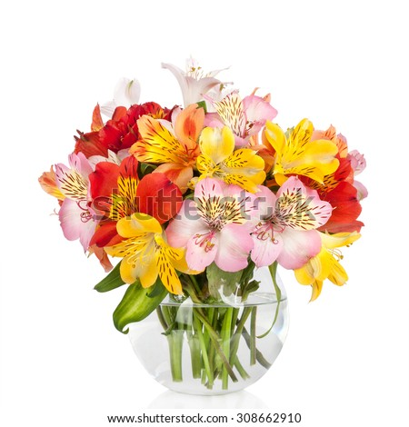 Alstroemeria flowers in vase  - stock photo