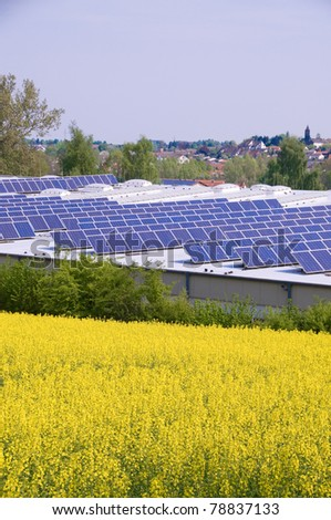 Alternative Energy - rapeseed and solar panels.