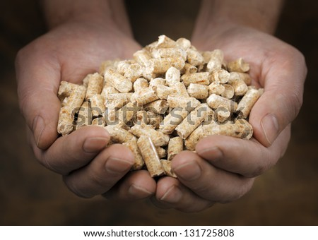 Alternative fuel: Pellets made from industrial wood waste. Short depth-of-field. - stock photo
