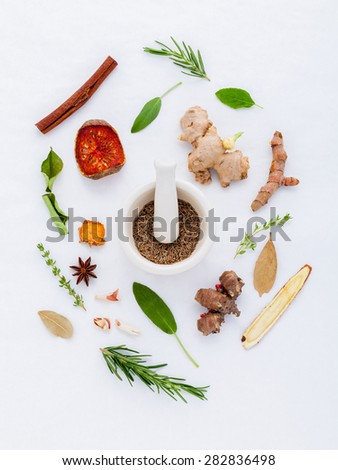 Alternative Medicinal herbs for herbal medicine for healthy recipe fresh and dry herbs with mortar on white background. - stock photo