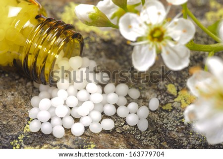 Alternative medicine and homeopathy with herbal pills - stock photo