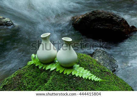 Alternative skin care homemade lotion on stone, green leaf with tropical waterfall in the background. as a spa concept. - stock photo