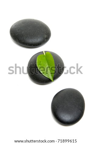 Alternative therapy and new life symbol - stock photo