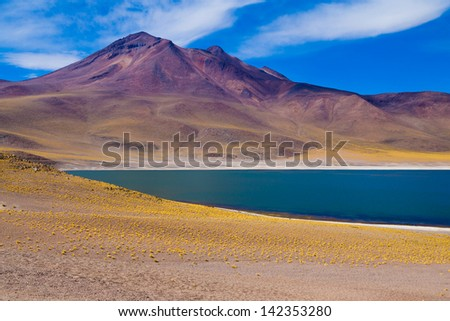 Altiplanic lagoon in Chile