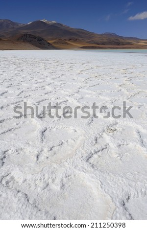 Altiplano high plateau and volcanic salt lake, Atacama Desert, Chile