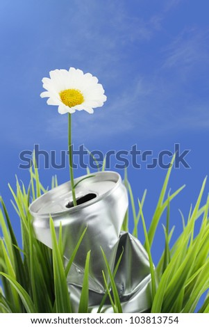 Aluminum can with growing daisy flower on the green grass - stock photo