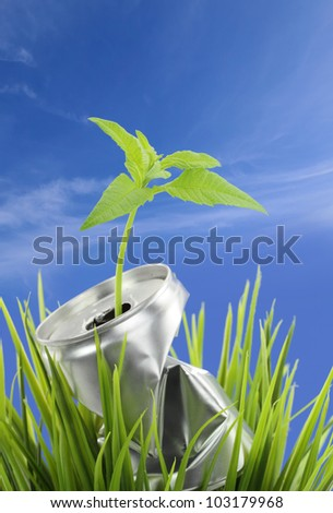 Aluminum can with growing plant on the green grass - stock photo